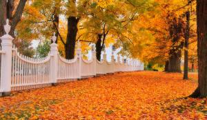 an-autumn-stroll-west-bennington-vermont-thomas-schoeller