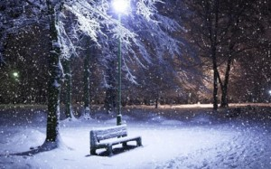 Garden-View-Beautiful-HD-Wallpapers-of-Snowfall