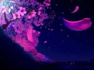 purple-is-cool-lovely-soothing-evening