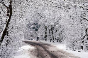 Snow+around+Billericay