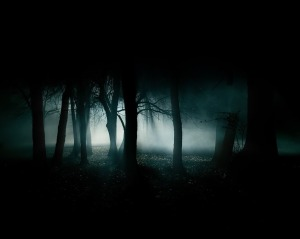 dark-forest-night-image
