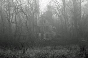 fog-house-2