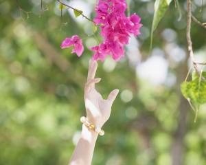 Flower Reaching Beauty Pink Hand Trees Nature Beautiful